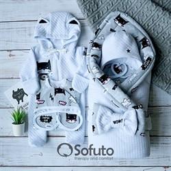 Комплект на выписку демисезонный (6 предметов) Sofuto Supercat